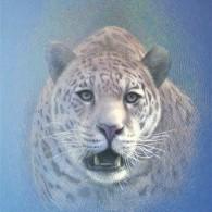 Jaguar Rica